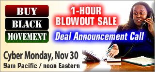 Cyber Monday 1-Hour Blowout Sale Conference Call