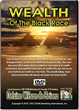 Wealth of the Black Race DVD
