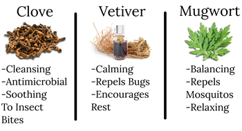 Contains Clove, Vetiver and Mugwort